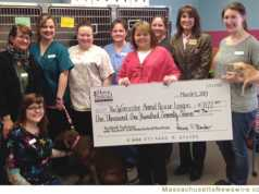 $1,177 for Worcester Animal Rescue League